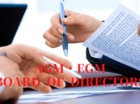 【AGM/EGM/DR】シンガポールの株主総会・取締役会の基本情報